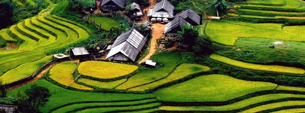 BinhYen